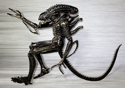 Black Warrior Xenomorph